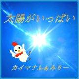 《応援タイプ》「太陽がいっぱい」CD-R